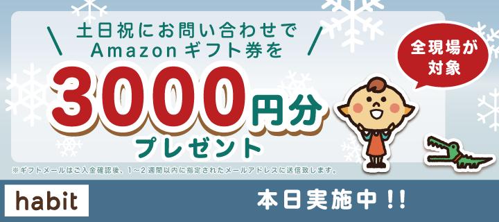 <土日(祝)限定!>amasonギフト券3000円分プレゼント!