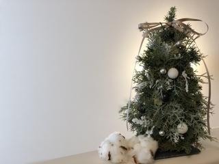 小さいクリスマスツリー
